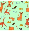 Cat kit pattern drawing kids