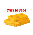 cheese slices yellow cheddar milk product vector image