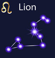constellation lion with stars in night sky vector image