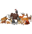 Different kind of wild animals vector image vector image