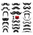 Mustaches set Design elements Hand drawn set vector image