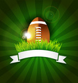 rugfootball american ball in grass with banner vector image