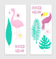 tropical design with flamingo vector image vector image