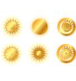 golden suns vector image