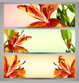 set of floral headers vector image