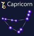 constellation capricorn with stars in night vector image vector image