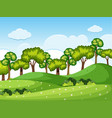 forrest scene with trees on the hills vector image vector image