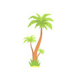 green palm tree cartoon vector image