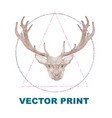 hand drawn vintage print with the deer vector image vector image