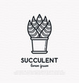 succulent in pot thin line icon vector image vector image