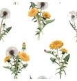 watercolor dandelion blowball pattern vector image vector image