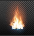 animation stage of decorative fire flame vector image