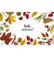 autumn leaves frame hand drawn botanical borders vector image