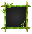 Bamboo grass frame with leafs isolated on white vector image vector image
