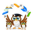 cheerful school owl vector image