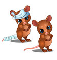 healthy and diseased mouse isolated on white vector image vector image