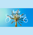 hello summer calligraphy lettering on background vector image
