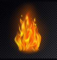 isolated fire emoji on transparent background vector image vector image
