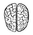 Nice human brain sign vector image vector image