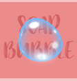 soap bubble background with text vector image vector image