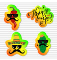 collection of cinco de mayo design elements vector image