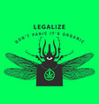 creative banner for legalize marijuana with beetle vector image vector image