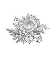 flower bouquet floral sketch engraving background vector image vector image