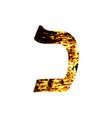 hebrew letter kaf shabby gold font the hebrew vector image vector image