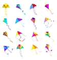 Kite icons set vector image vector image