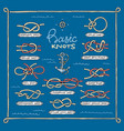 knot marine knotty bow or nautical bowed vector image vector image