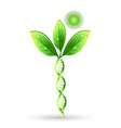 natural dna plant concept can refer to vector image