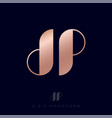 gold d and p monogram letters logo vector image