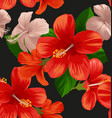 hibicus flowers pattern 2 vector image vector image