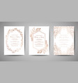 luxury wedding save date invitation cards vector image vector image
