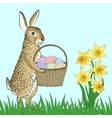 rabbit and basket with eggs vector image