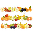 set of fruit backgrounds vector image vector image