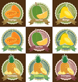 Set of various tropical fruit tag label badge vector image vector image