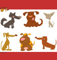 cute dogs cartoon characters vector image vector image