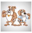 dog cartoon doctor bulldog beagle logo vector image
