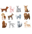 funny and cute cartoon dogs and puppy pet vector image vector image