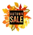 autumn banner for your design vector image vector image