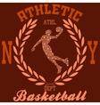 basketball ny vector image vector image