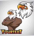 eagle mascot character design set vector image vector image