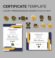 professional certificate design with badge vector image vector image
