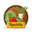 vegetables food ingredient banner vector image vector image
