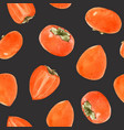 watercolor persimmon pattern vector image vector image