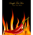 hot chili peppers in fire vector image
