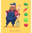 Pixel funny farmer character Isolated on yellow vector image