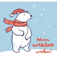 christmas card polar bear in red scarf and hat vector image