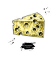 emmental cheese drawing hand drawn food vector image